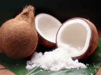 Paul Penders - Coconut