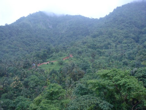 Vanamoolika is 5000 feet above sea level